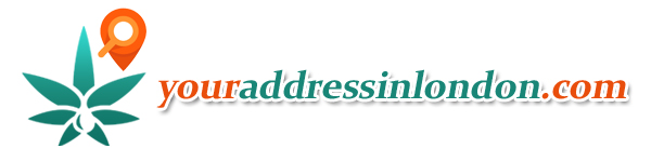 youraddressinlondon.com